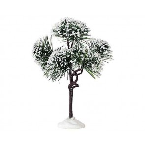 Lemax Mountain Pine, Medium