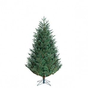 Black Box Trees Frasier kunstkerstboom blauw TIPS 1880 - h185xd124cm